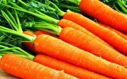 Морковь: польза, вред и аллергия